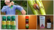 Инсектоакарицидные средства от клещей