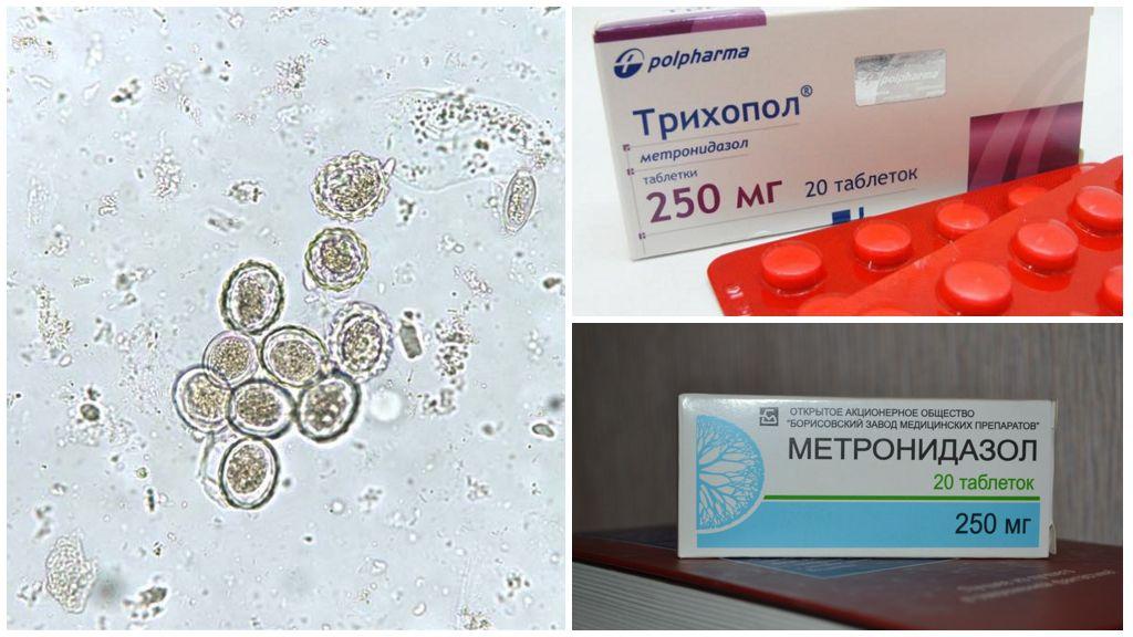 Метронидазол при бластоцистозе