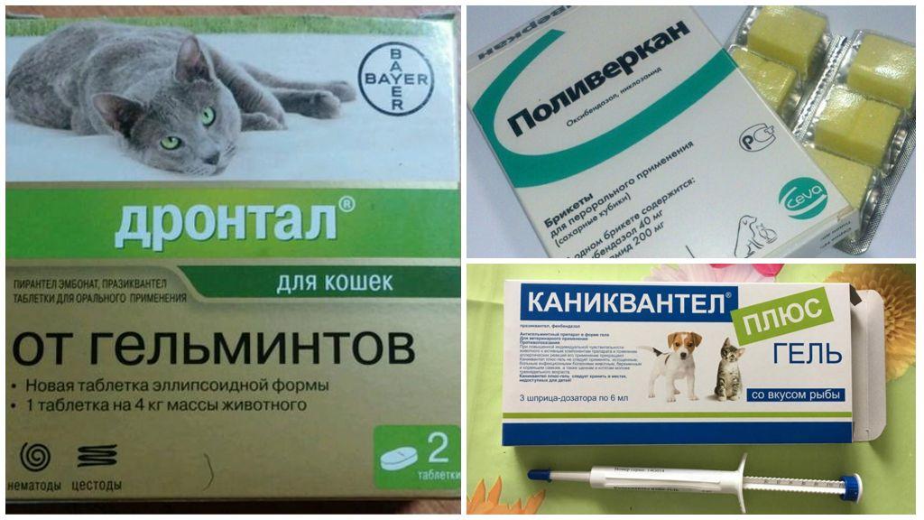 Таблетки против ленточных глистов