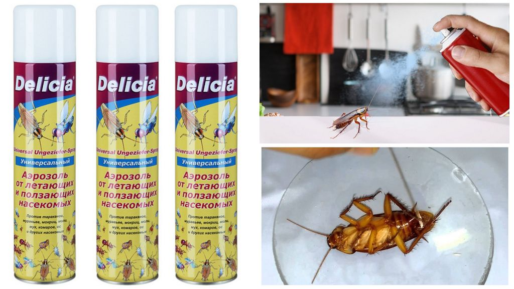 Аэрозоль от тараканов Delicia