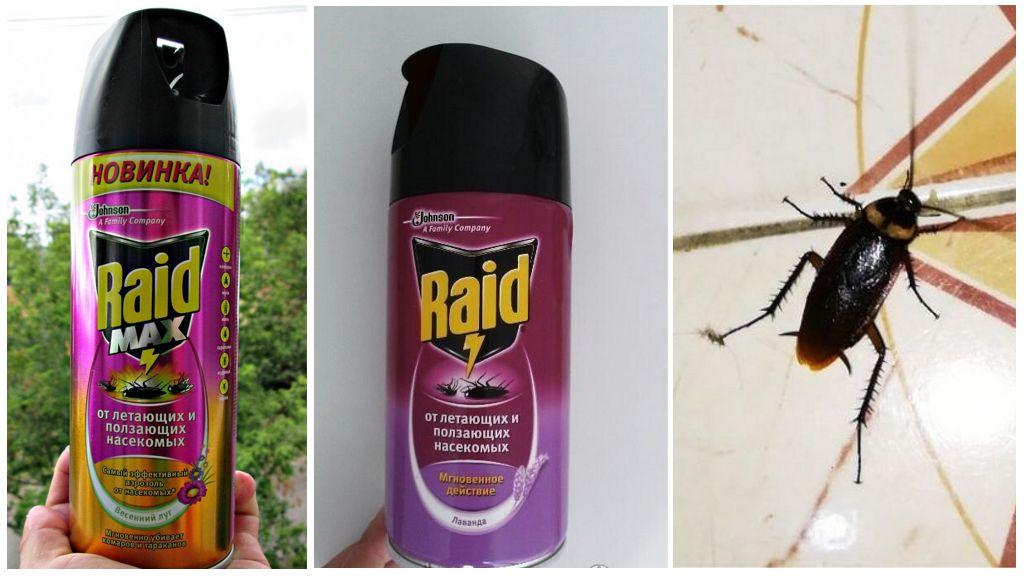 Аэрозоли Рейд против летающих и ползающих насекомых (Лаванда, Весенний луг)