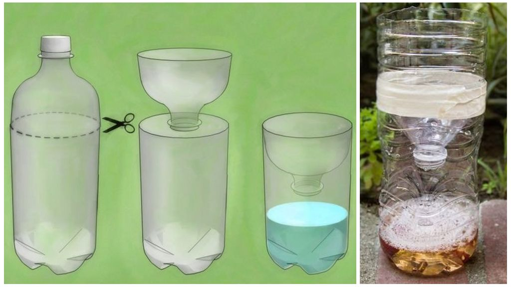 Ловушка из пластиковой бутылки для тараканов