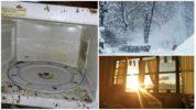 Холод и жара от тараканов