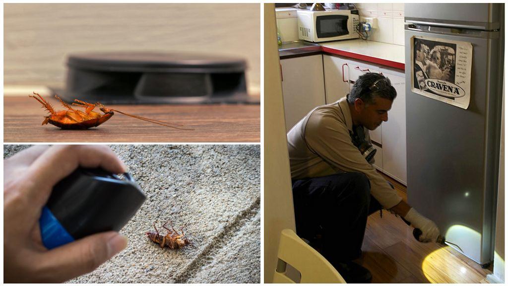 Борьба с тараканами в холодильнике