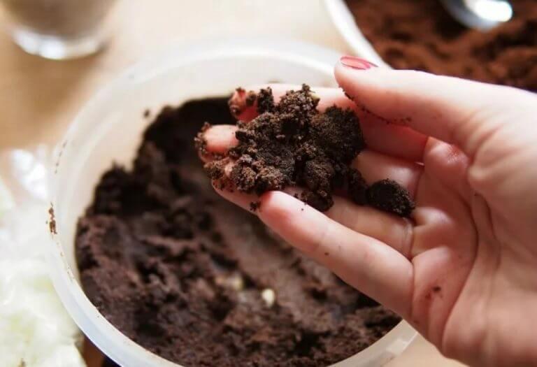 Кофейная гуща или кофе на огороде. Нет, не для гадания, а для полива!