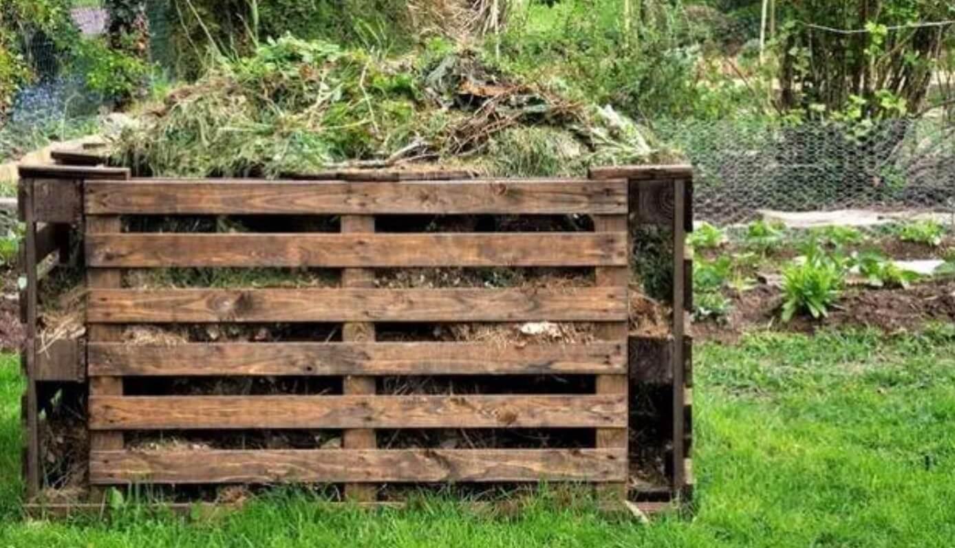 Хитрости приготовления компоста для повышения урожая – избегаем частых ошибок